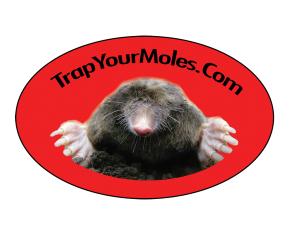 Trap Your Moles